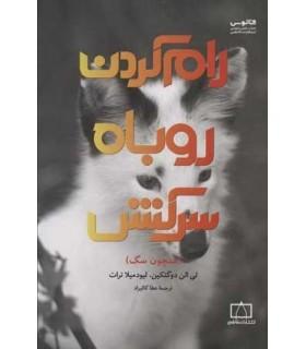 کتاب رام کردن روباه سرکش همچون سگ